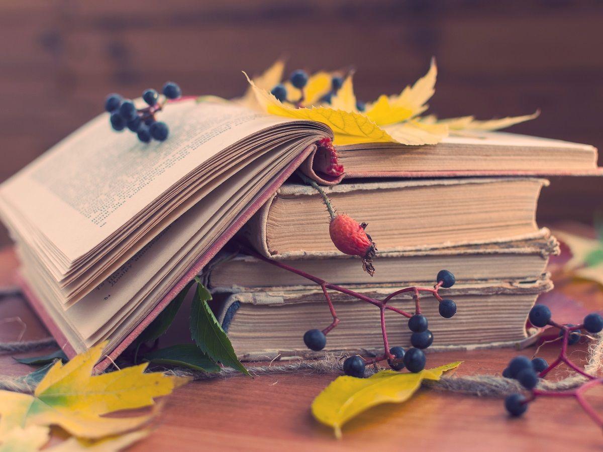 Осенние нововведения в документы – открытые книги на столе